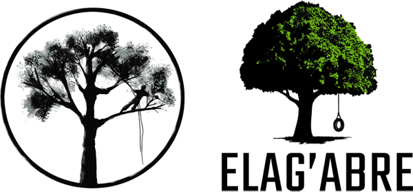 u00c9lagage d u0026 39 arbre grandfontaine